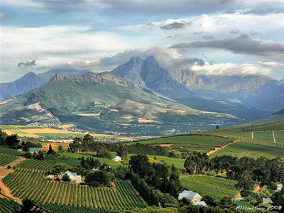 Areal view of Stellenbosch mountains and vineyards