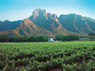 Franschhoek mountains and vineyards